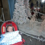 Sleeping by some random Christmas display